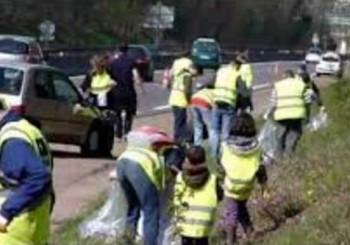 Nettoyage de la forêt de Sénart > dimanche 7 février