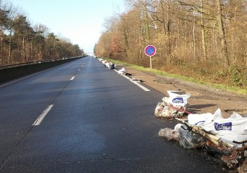 Bilan de l'opération nettoyage N6 / Forêt de Sénart (7 Février 2016)